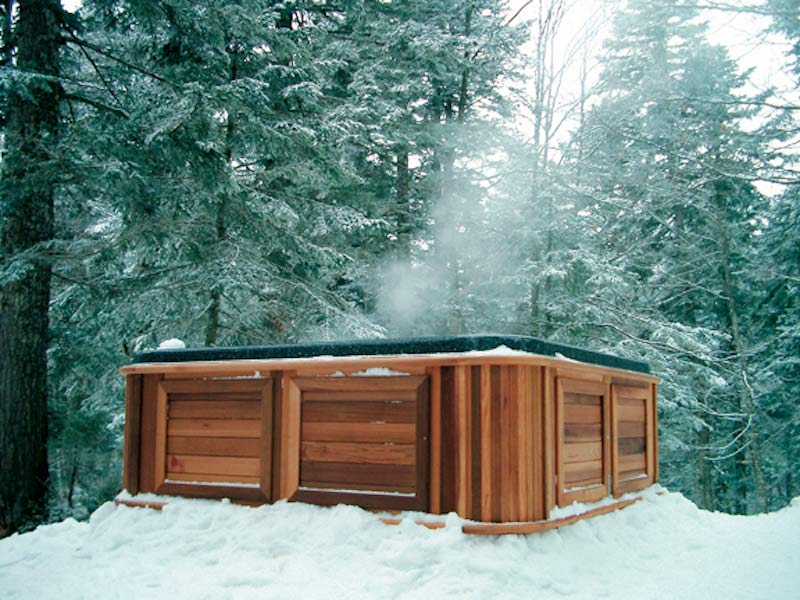 Maintenance Free Western Red Cedar Cabinet in the forest
